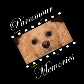 Paramour Memories Photography
